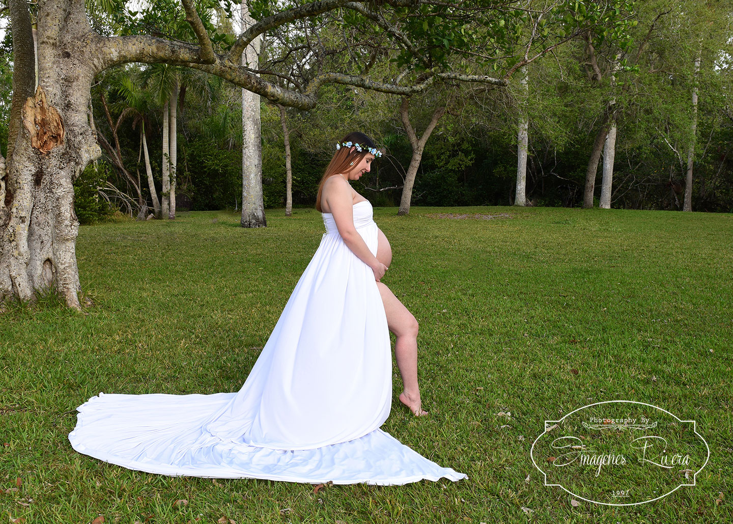 ♥ Twins Maternity Photo Shoot in a Matheson Hammock Park Miami ♥